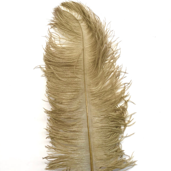 "Ostrich Wing Feather Plumes 50-55cm (20-22"") - Gold ((SECONDS))"