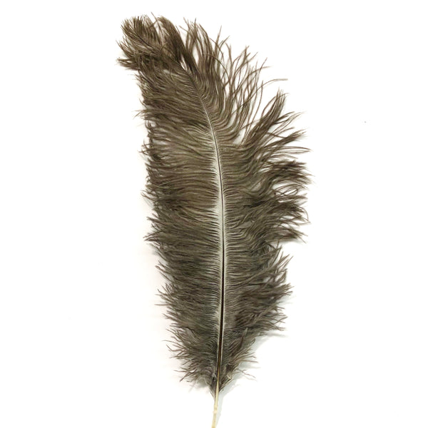 Ostrich Blondine Feather 25-40cm x 5 pcs - Natural ((SECONDS))