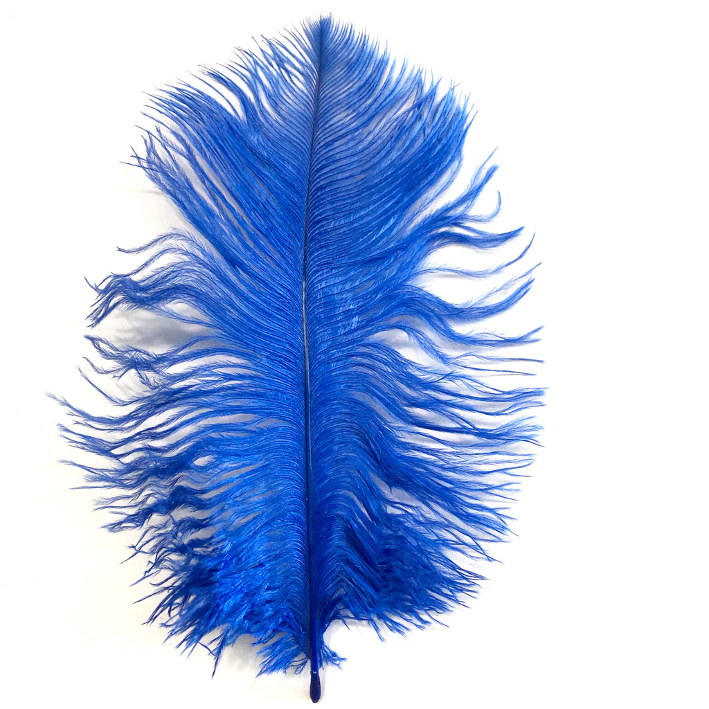 Ostrich Feather Drab 6-15cm x 20 - Royal Blue