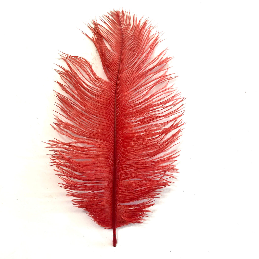 Ostrich Feather Drab 6-15cm x 20 - Red