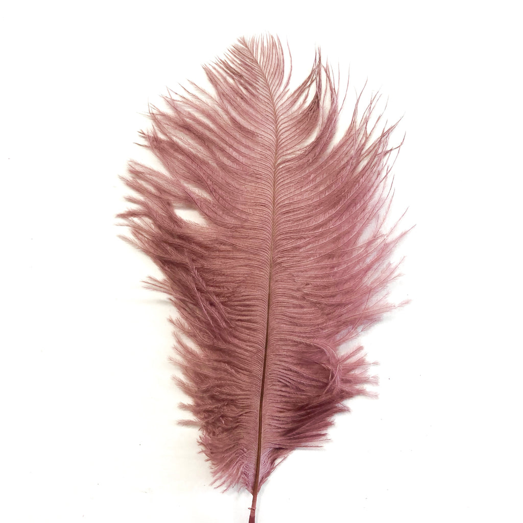 Ostrich Feather Drab 6-15cm x 20 - Mocca