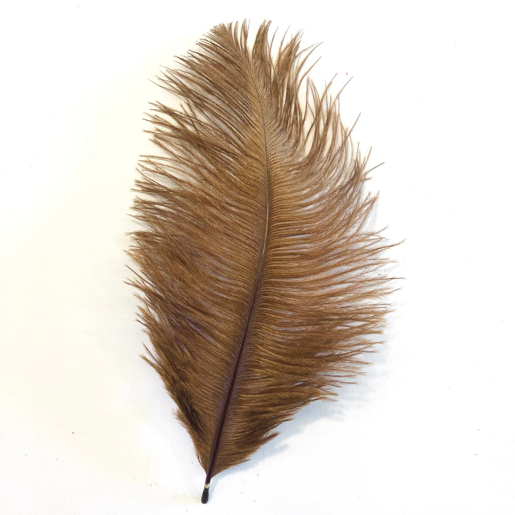 Ostrich Feather Drab 6-15cm x 20 - Rust Brown