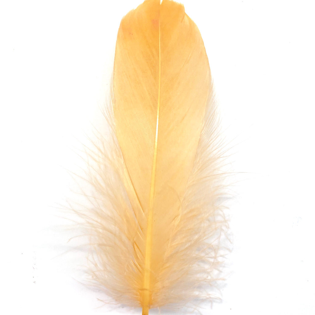 Goose Nagoire Feathers 10 grams - Apricot
