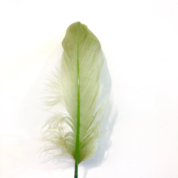 Goose Nagoire Feathers 10 grams - Olive