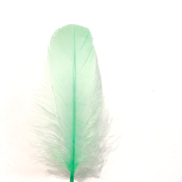 Goose Nagoire Feathers 10 grams - Mint Green