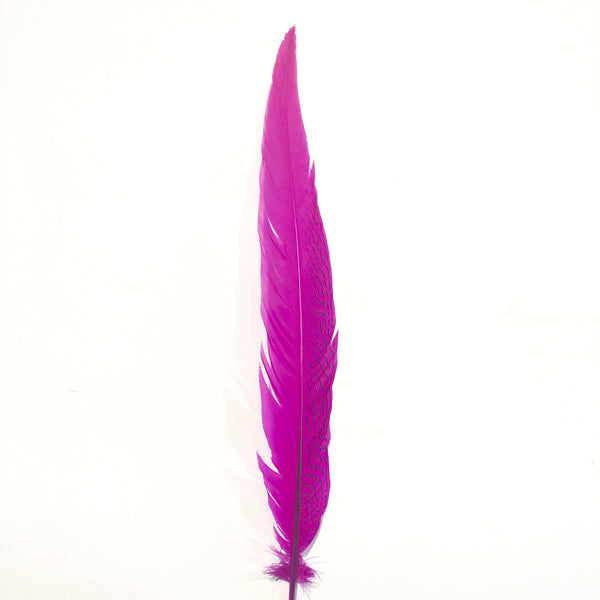 "20"" to 30"" Silver Pheasant Tail Feather - Cerise"