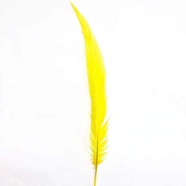 "10"" to 20"" Silver Pheasant Tail Feather - Yellow"