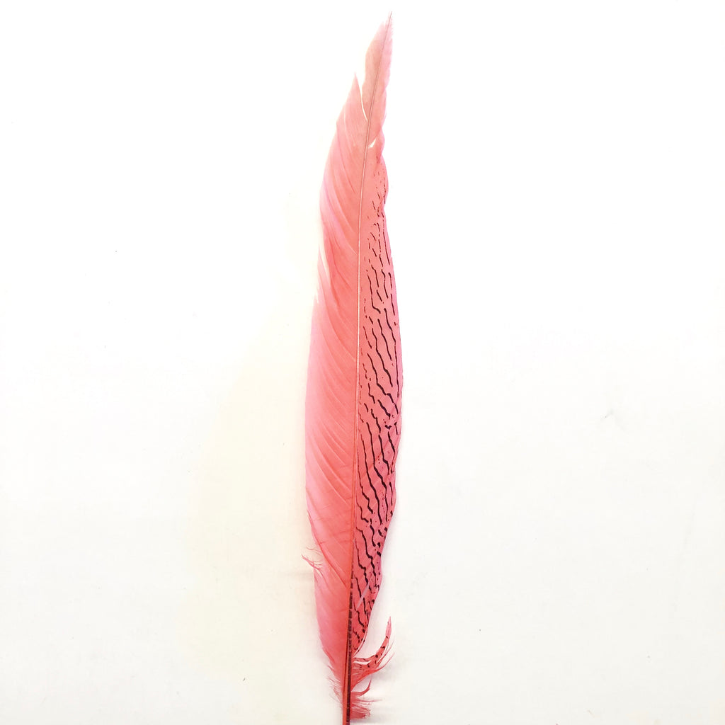 "20"" To 30"" Silver Pheasant Tail Feather - Dusty Pink ((SECONDS))"