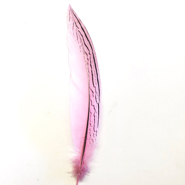 "6"" to 10"" Silver Pheasant Tail Feather - Pink ((SECONDS))"