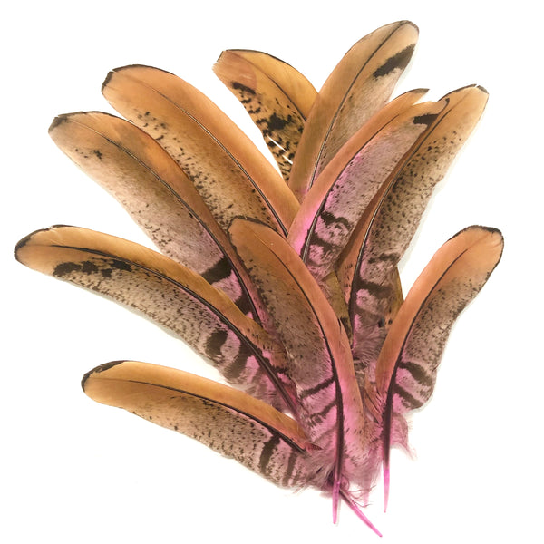 "Under 6"" Reeves Pheasant Tail Feather x 10 pcs - Pink"