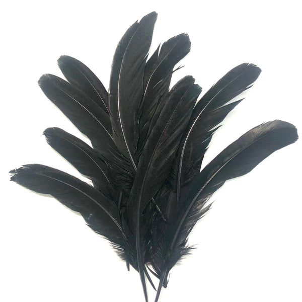 "Under 6"" Reeves Pheasant Tail Feather x 10 pcs - Black"