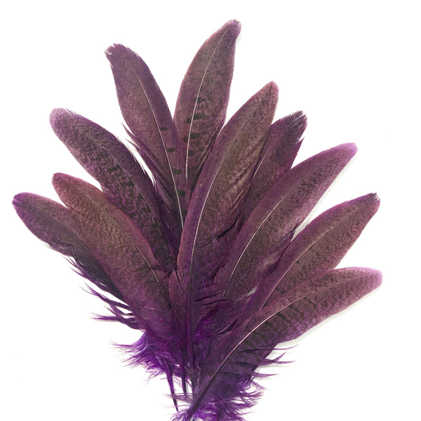 "Under 6"" Ringneck Pheasant Tail Feather x 10 pcs - Purple"