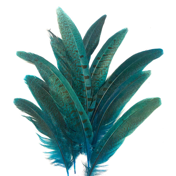 "Under 6"" Ringneck Pheasant Tail Feather x 10 pcs - Turquoise"