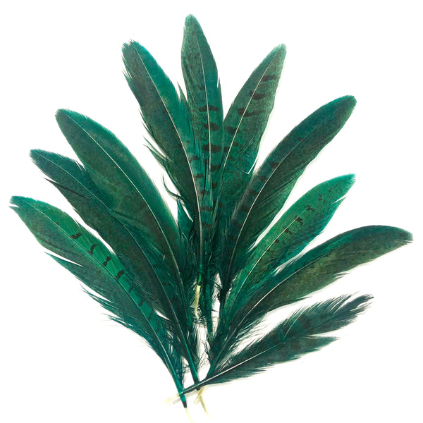 "Under 6"" Ringneck Pheasant Tail Feather x 10 pcs - Emerald Green"