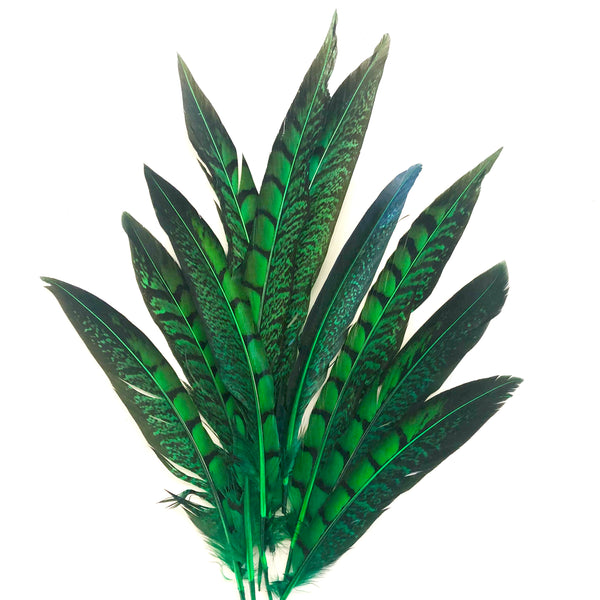 "5"" to 10"" Lady Amherst Pheasant Side Tail Feather x 10 pcs - Green"