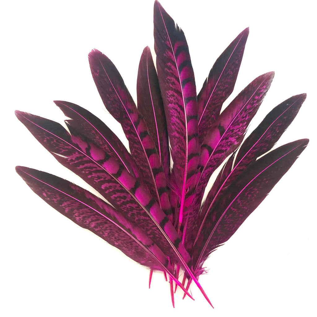 "5"" to 10"" Lady Amherst Pheasant Side Tail Feather x 10 pcs - Cerise"