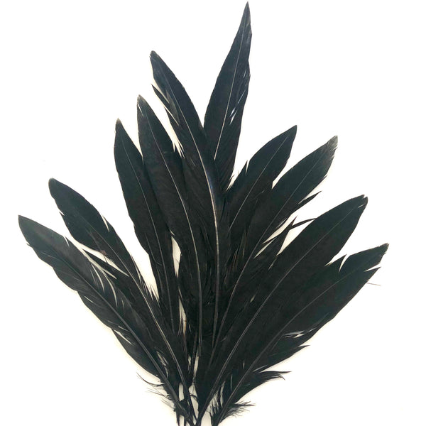"5"" to 10"" Lady Amherst Pheasant Side Tail Feather x 10 pcs - Black"