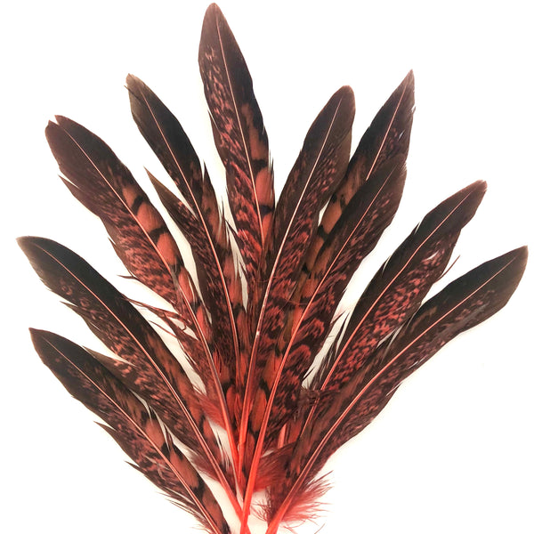 "5"" to 10"" Lady Amherst Pheasant Side Tail Feather x 10 pcs - Dusty Pink"