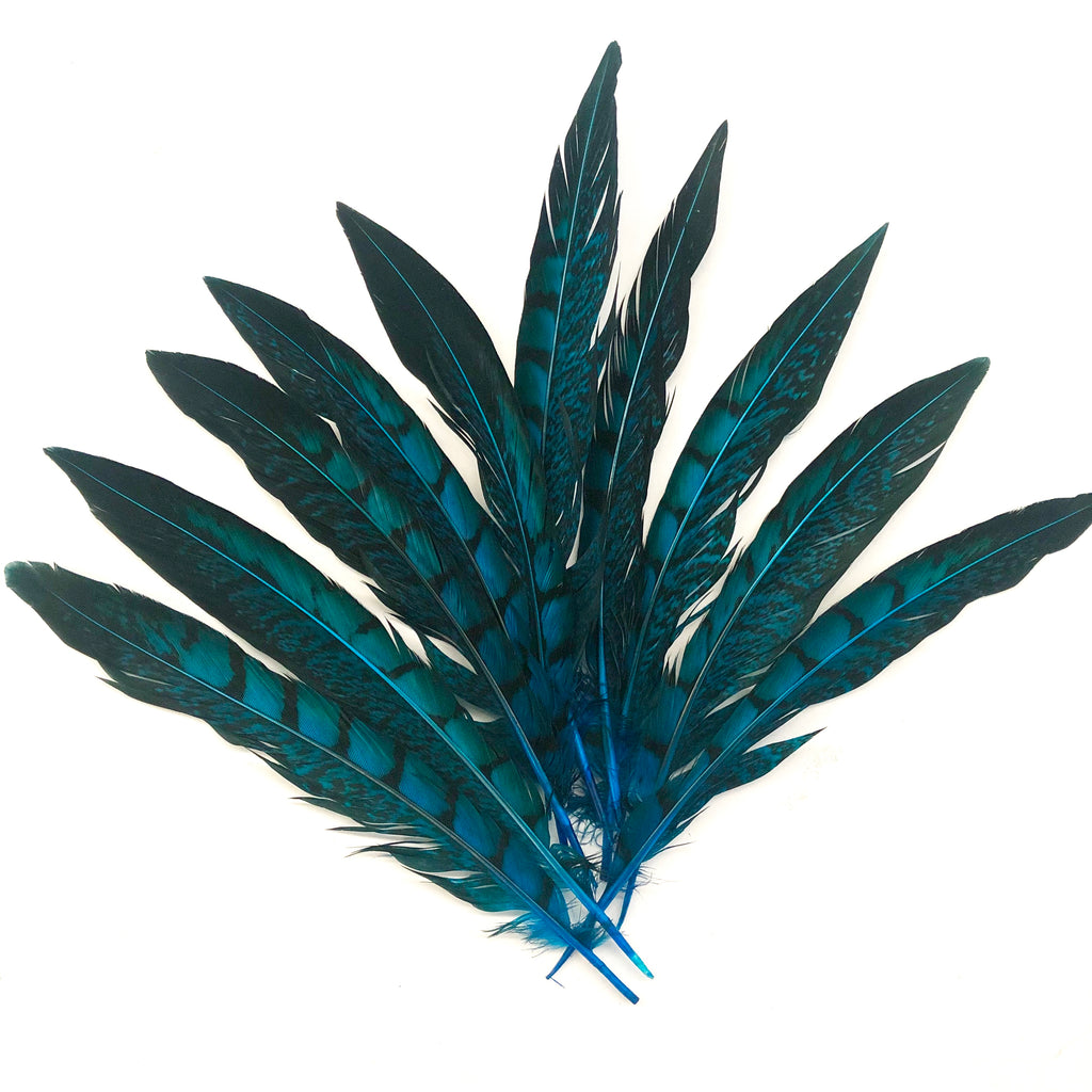 "5"" to 10"" Lady Amherst Pheasant Side Tail Feather x 10 pcs - Turquoise"