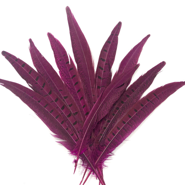 "6"" to 10"" Ringneck Pheasant Tail Feather x 10 pcs - Cerise"