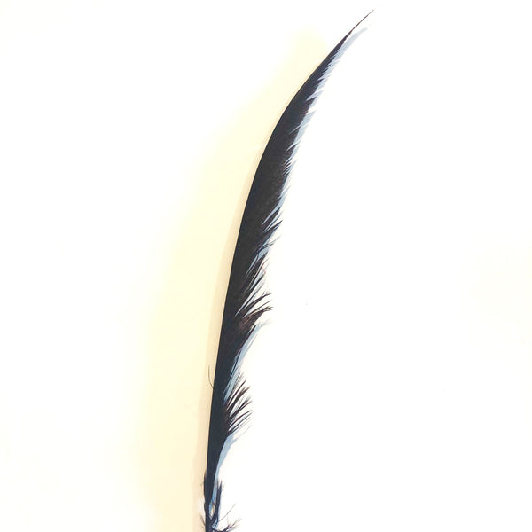 Golden Pheasant Centre Tail Feather - Chocolate Brown ((SECONDS))