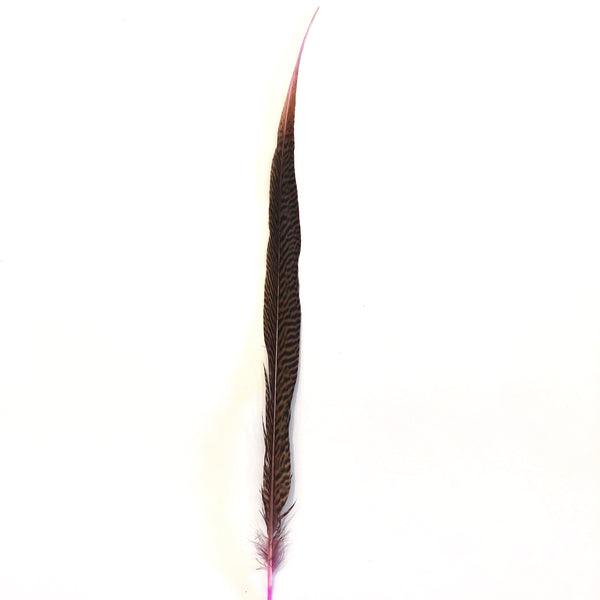 "20"" to 30"" Golden Pheasant Side Tail Feather - Pink ((SECONDS))"