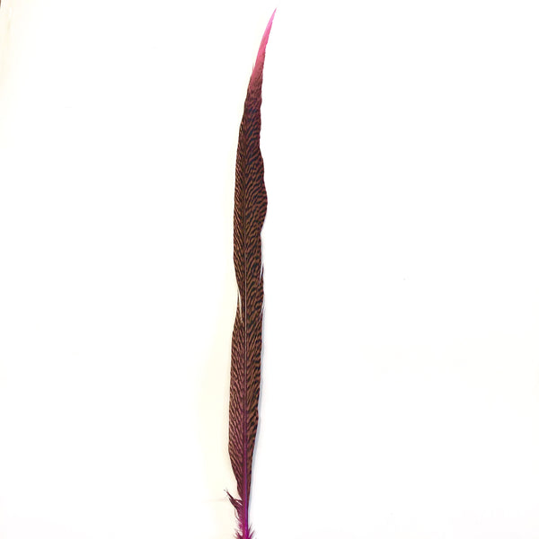 "20"" to 30"" Golden Pheasant Side Tail Feather - Hot Pink ((SECONDS))"