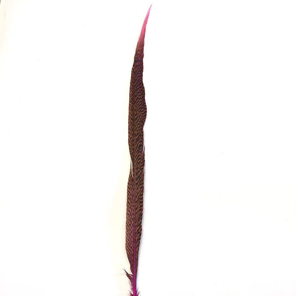 "10"" to 20"" Golden Pheasant Side Tail Feather - Hot Pink ((SECONDS))"