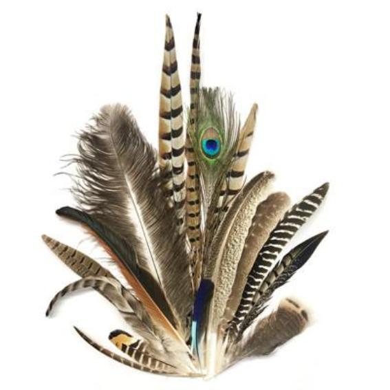 20 x Mixed Sized Natural Feathers 10-35cm Pack
