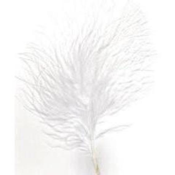Itty Bitty Marabou Feather Plumage Pack 10 grams - White