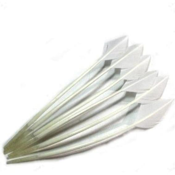 Turkey Wing Arrowhead Feather - White