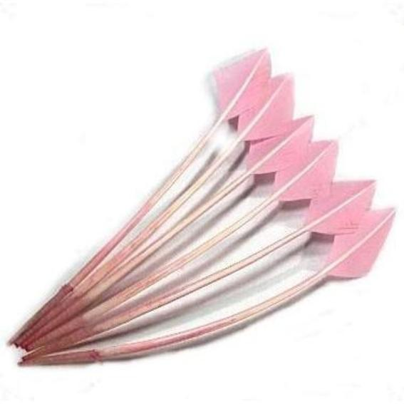 Turkey Wing Arrowhead Feather - Pink