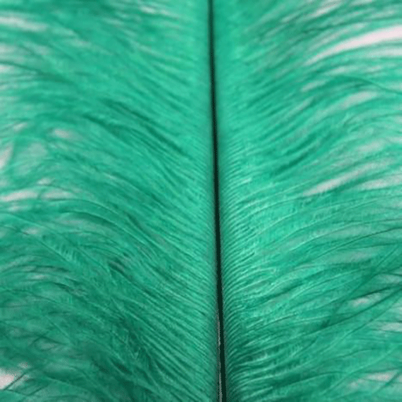 Ostrich Blondine Feather 25-40cm x 5 pcs - Apple Green ((SECONDS))