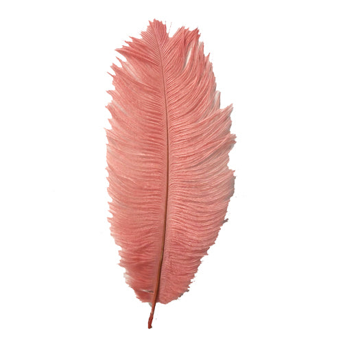 Ostrich Feather Drab 6-15cm x 5 - Coral ((SECONDS))