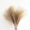 Dried Bulrush Reed Flower Grass Stem - Natural