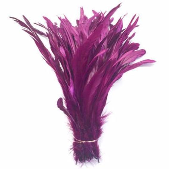 "10/12"" - 280mm Eggplant Coque Tail Feathers /10 pcs"