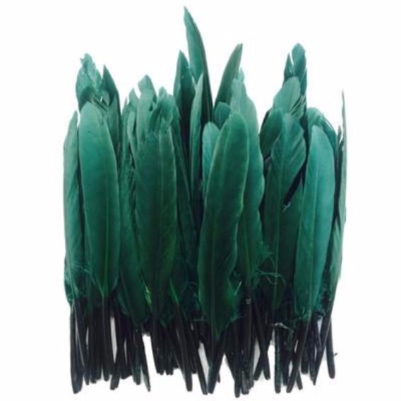 Tiny Goose Pointer Feathers 10 grams - Emerald Green