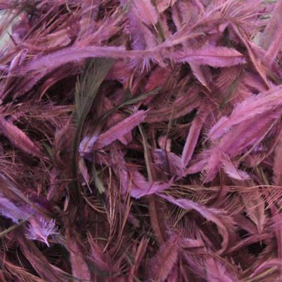 Emu Feathers 5 grams - Grape