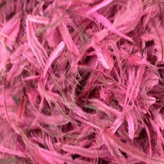 Emu Feathers 5 grams - Hot Pink