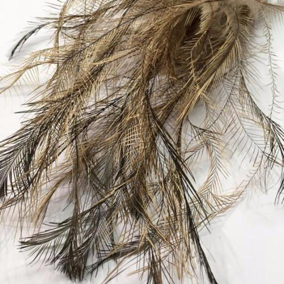 Emu TAIL feathers 5 grams - Natural