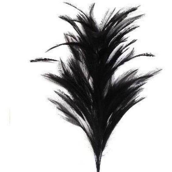 Black Coque Feather Tree
