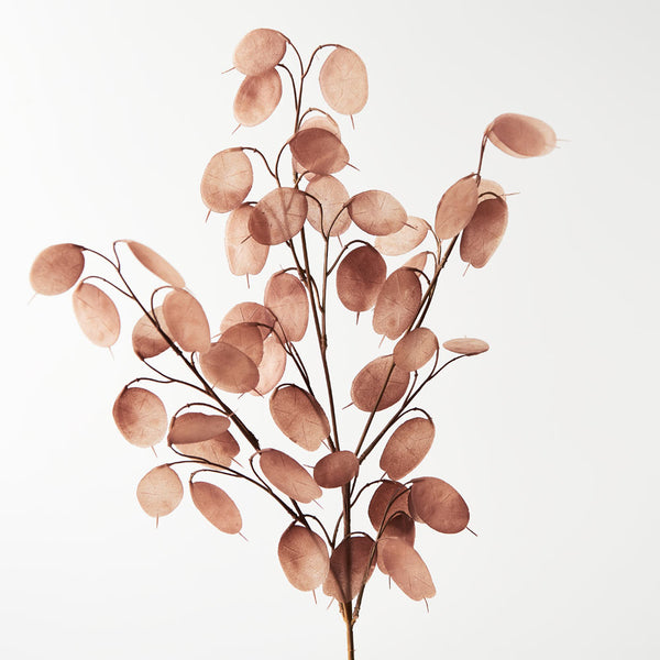 Artificial Lunaria Moonwort Honesty Branch Spray - Brown