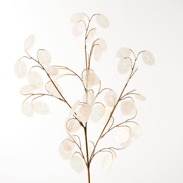 Artificial Lunaria Moonwort Honesty Branch Spray - Ivory