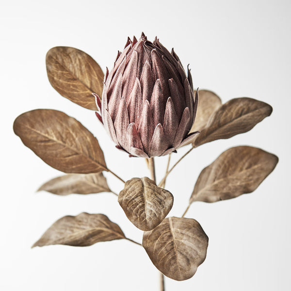 Artificial Australian Native Protea Queen Bud Flower Stem - Chocolate Brown