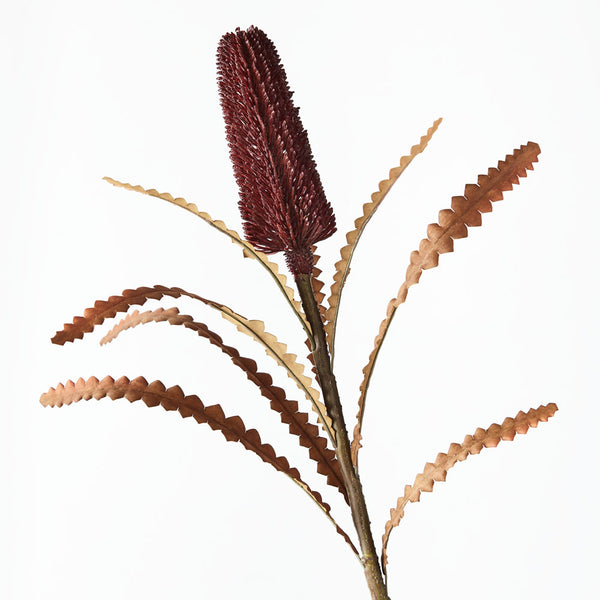 Artificial Australian Native Premium Banksia Pencil Praemorsa Flower Stem - Burgundy (Style 5)