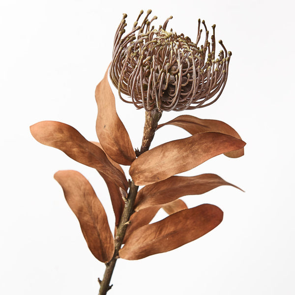 Artificial Australian Native Silk Protea Leucospermum Flower Spray - Natural (Style 7)