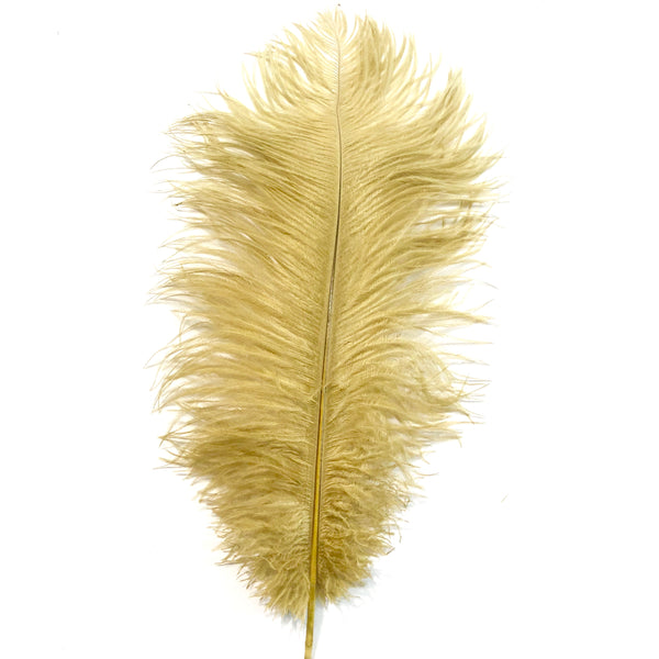 Ostrich Drab Feather 27-32cm - Gold *Seconds* Pack of 5