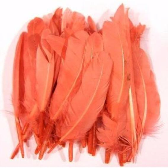 Tiny Goose Pointer Feathers 10 grams - Coral