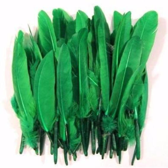 Tiny Goose Pointer Feathers 10 grams - Green