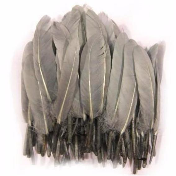 Tiny Goose Pointer Feathers 10 grams - Grey